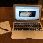 Macでブログ執筆中